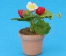 Sm4785 - Maceta con flores