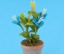 Sm4788 - Maceta con flores azules