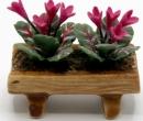 Tc0858 - Pot de fleurs