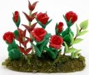 Tc1354 - Pianta con rose