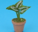 Sm4022 - Pot avec plante
