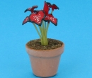 Sm4030 - Maceta con planta