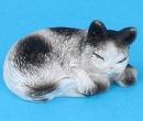 Tc1961 - Sleeping cat