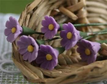 Tc0141 - Flores lilas