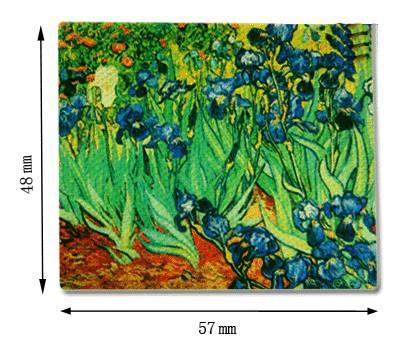 Tc2501 - Lienzo flores