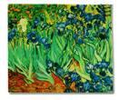 Tc0827 - Lienzo flores