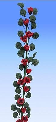 Tc0906 - Pianta rampicante rossa