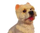 Tc0951 - Dog
