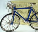 Tc5027 - Bicicleta azul